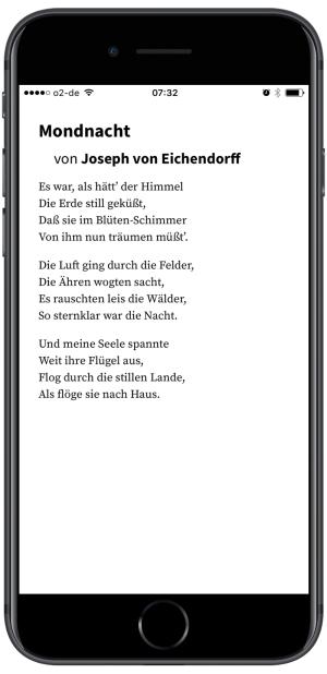 Vollbild-Hochkant